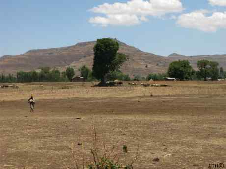 Village in North Ethiopia